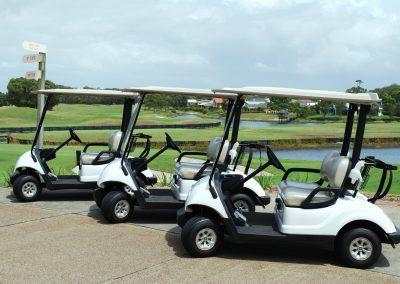 Golf Cart Warmer